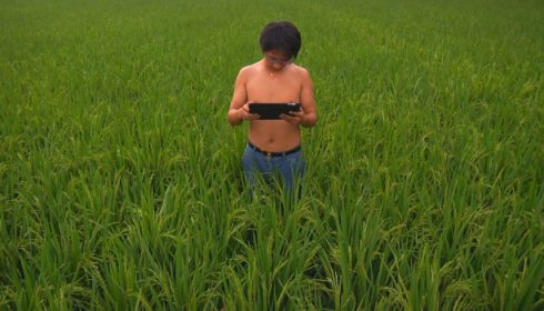 Photo of a man in a green field of grass holding an iPad