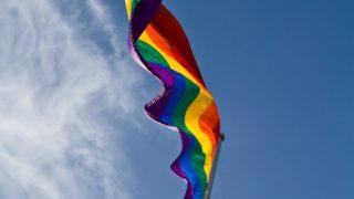 Plebiscite Same Sex Marriage Fiction Pixabay
