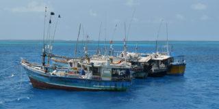 Cocos Island, by Reneé Pettitt-Schipp.