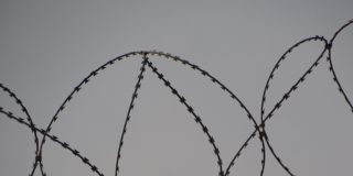 barbed-wire-black-and-white-black-and-white-690800