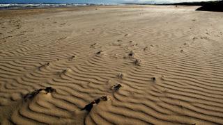 australian beach identity belonging