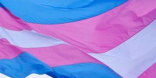 Trans-Pride-Flag